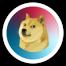 I love doge 6