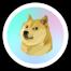 I love doge 7