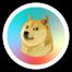 I love doge 9
