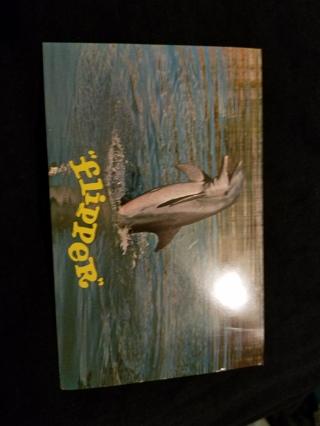 Vintage Flipper  postcard