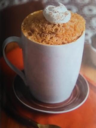 Pumpkin Spice Mug Cake Recipe