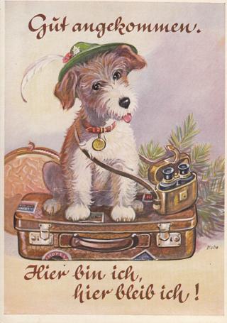 RARE Vintage Postcard Fold-out , Germany