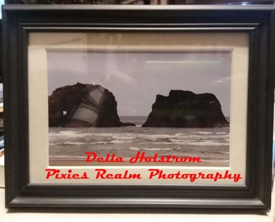 Pacific NW Framed Print