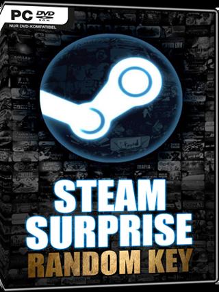 Random steam gift card (10$-30$)