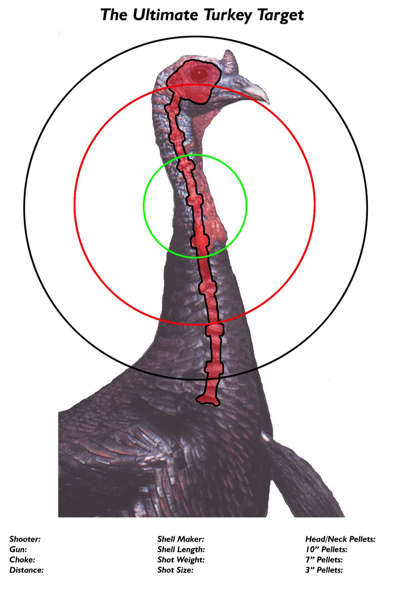 It is a graphic of Crazy Printable Turkey Head Target