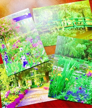 Free monets passion the gardens at giverny 5 x 7 greeting blank monets passion the gardens at giverny 5 x 7 greeting blank notecards brand new american art m4hsunfo
