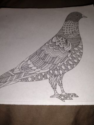 3 Small Coloring Pages-Birds