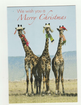 Christmas Card Unused With Envelope From National Geographic