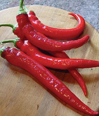 HEIRLOOM **Cayenne** pepper seeds 15+  Awesome health benefits!!
