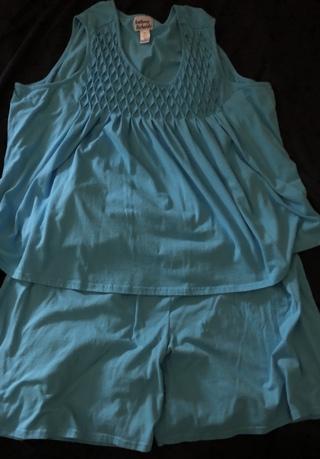 Set of Size 4x, Light Blue, Gently Used Pajama Shorts. Anthony Richards. Cotton. EUC