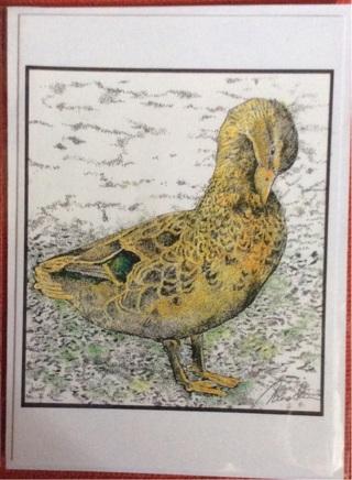 "PREENING MALLARD - 5 x 7"" art card by artist Nina Struthers - GIN ONLY"