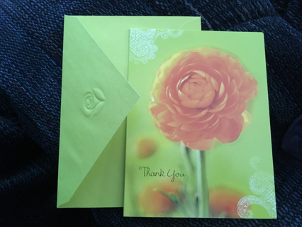 2 TWO BLANK CARD/NOTES WITH THANK YOU ON THE FRONT INCLUDING AN ENVELOPE