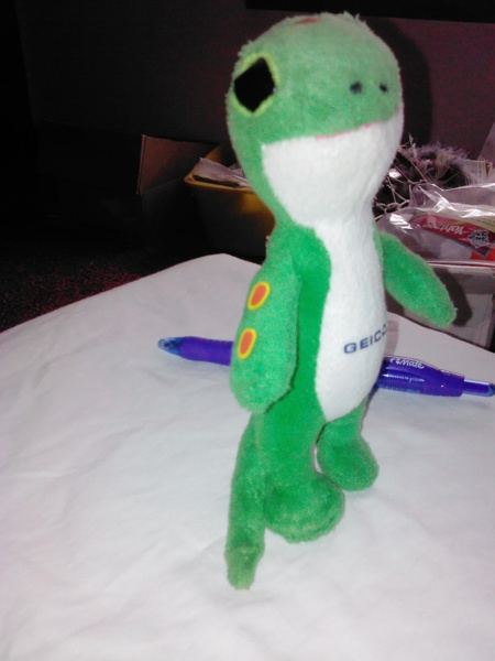 free the geico gecko plush toy dolls stuffed animals listia