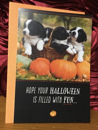 Puppies in Basket Halloween Card with Envelope