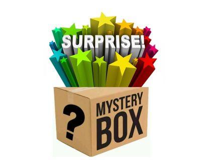 Mystery Surprise Auction