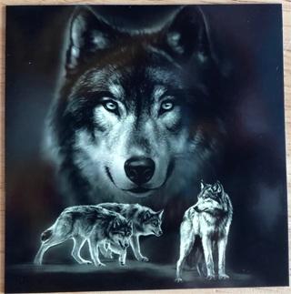 "Wolf Study - 4 x 4"" MAGNET"
