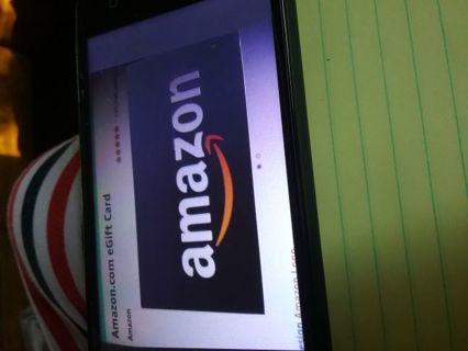 25.00 Amazon egiftcard