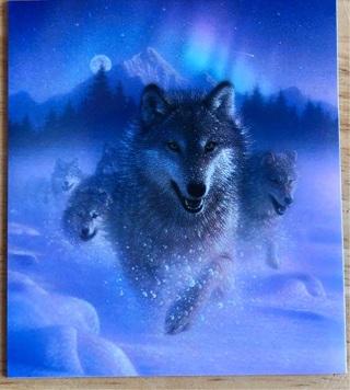 "SNOW RUNNER WOLF - 4 x 3"" MAGNET"