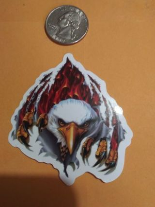 Bald Eagle new lab top stickers No refunds! Lowest gins no lower! Always bonus!