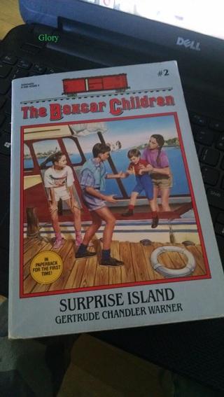 Surprise Island | Book Summaries