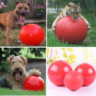 Pet Dog Cat Play Boomer Ball Indestructible Solid Holder Funny Ball Toy Training (3 size)