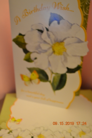 "****MAGNOLIA FLOWER ""BIRTHDAY CARD"" W/MATCHING ENVELOPE***FREE SHIPPING"