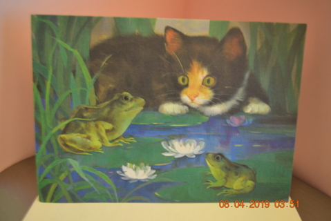 "****""CUTE CAT WATCHING TWO FROGS"" THINKING OF YOU CARD W/ENVELOPE***FREE SHIPPING"