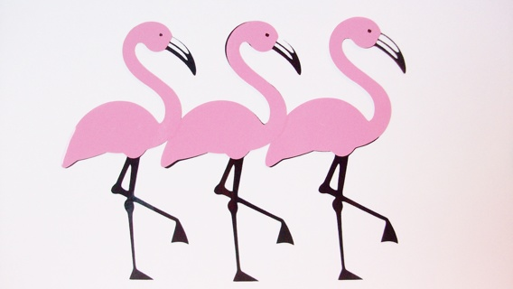 Free Pink Flamingo Vinyl Decals 3 Inch Single Decal 0