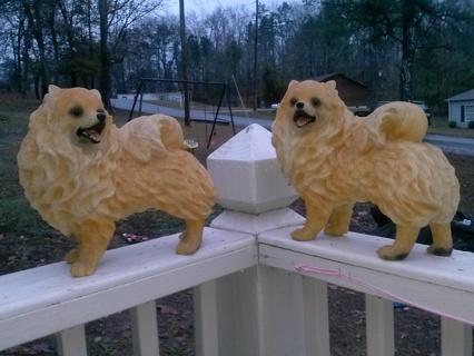 Free Pomeranian Statues Antiques Listiacom Auctions For Free Stuff