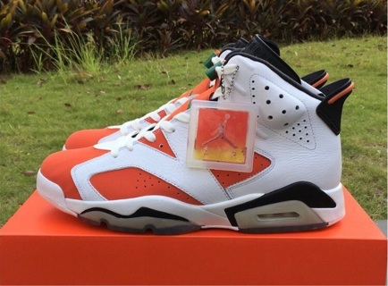 "Air Jordan Retro 6 ""Gatorade"""