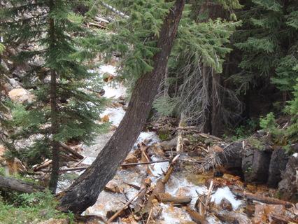 Desert Photo #11 Waterfall, Mountain Stream