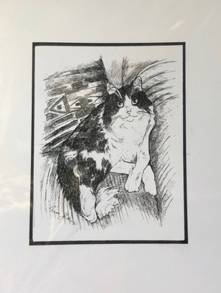 "Maine Coon Cat - 5 x 7"" art card by artist Nina Struthers - GIN ONLY"