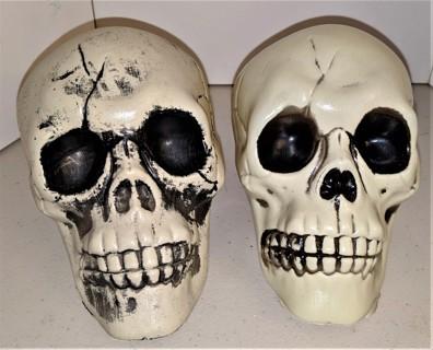 "2 hollow plastic Halloween Skulls - size 6"" x 4"""