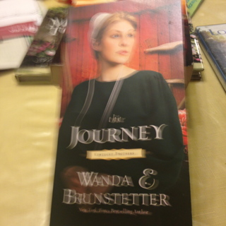 "Book 1 of 3 ""The Journey"" Of the Amish Kentucky Brothers"