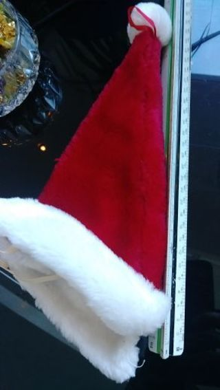Dog Costume- Santa Hat- christmas- as is- only used for a picture