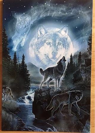 "FULL MOON WOLF PACK - 3 x 5"" MAGNET"