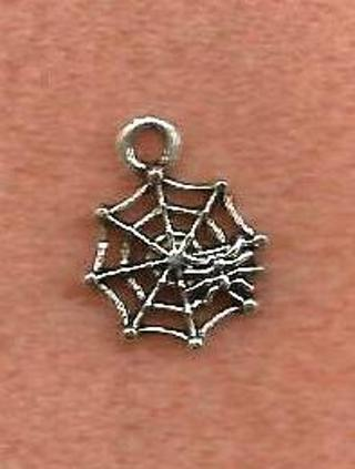 Spider & Web Charm - New