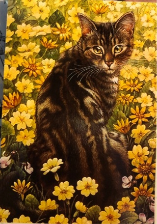 """Tabby Cat yellow flowers- 3 x 5"""" MAGNET"""