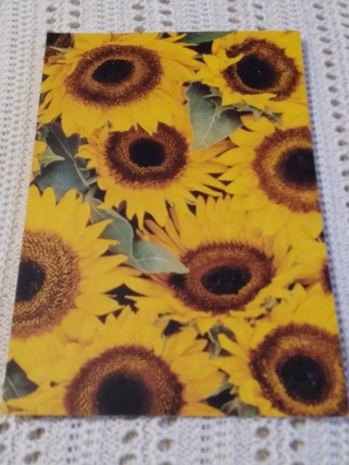 Greeting Cards - Sunflowers
