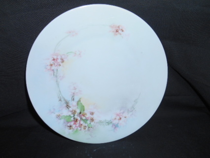 BEAUTIFUL SELSIA HAND PAINTED DESERT PLATE