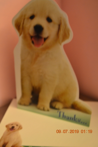 ****PUPPY LOVE THANKS CARD W/MATCHING ENVELOPE***FREE SHIPPING