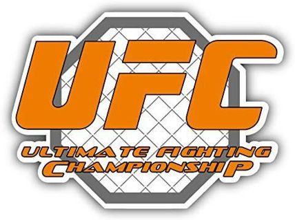 UFC Fighting Car Bumper Sticker Decal 5'' x 4''