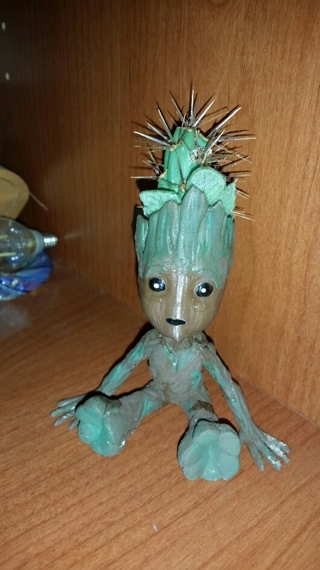 BABY GROOT Mini Succulent Planter with Live Chola Wood Cactus
