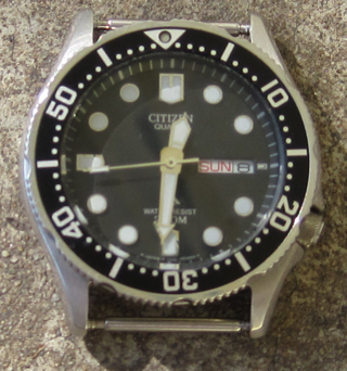 citizen promaster watch instructions