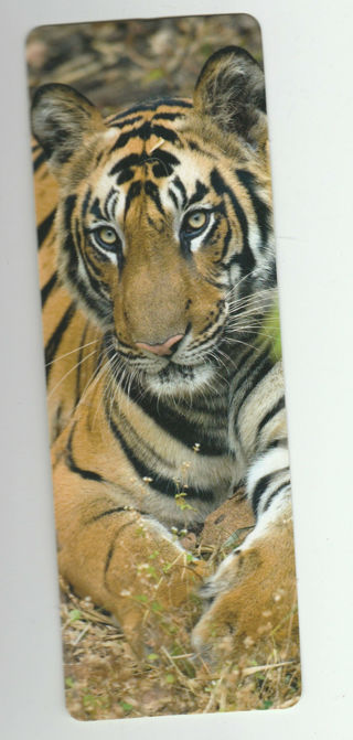 Bookmark given out by the WorldWildlife.org