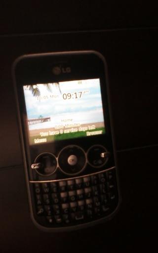 Net 10 Lg phone