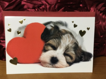 Sleeping Puppy Next to Big Red Heart Valentine's Day Card(with envelope)