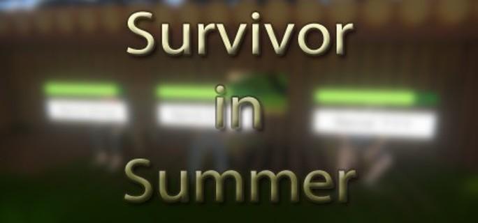 Survivor in Summer - Steam Key