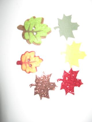 6 fall leaf magnets