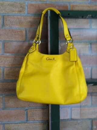 Coach Ashley Leather Hobo Shoulder Bag Lemon Yellow F21926 Gin With